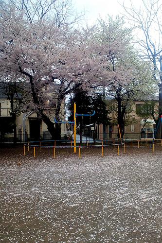 コンデジ 002-3.jpg